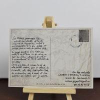 carte-postale-meduses-verso